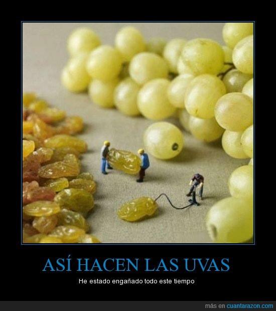 asi,diminuto,engañado,hacen,inflar,las,pasa,uvas