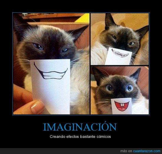 boca,dibujada,dibujar,dibujo,gato,pintar,sonrisa