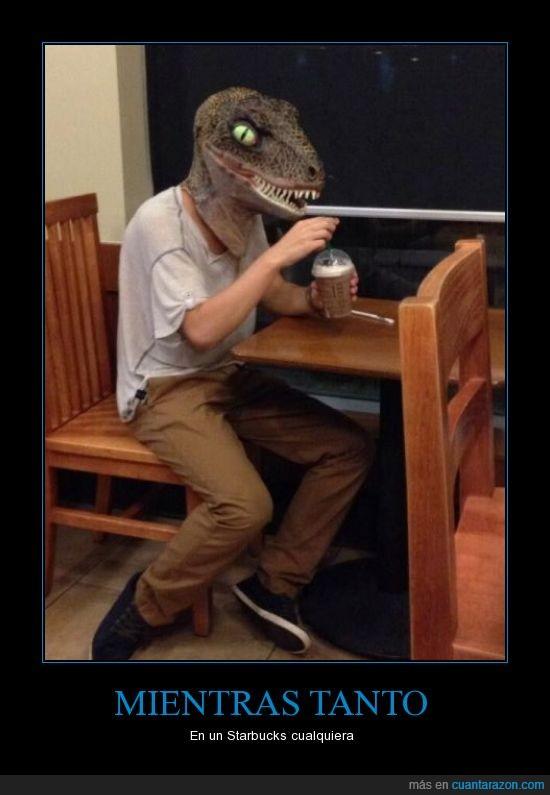 cafe,careta,dinosaurio,frappucchino,velocirraptor