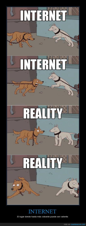 cadena,falsos,Internet,Los simpson,peleas,usar perros,valiente