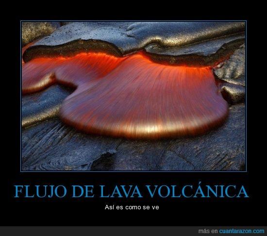 bruce omori,flujo,lava,volcán