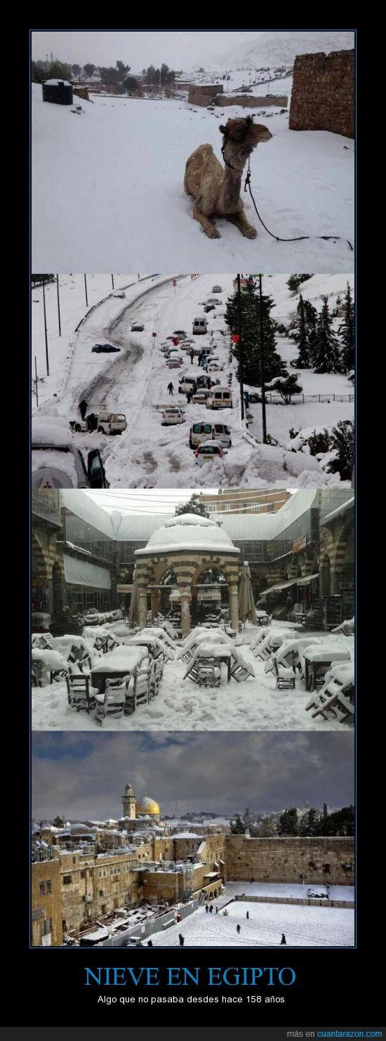 Egipto,el cairo,neva,nevada,nieve,raro