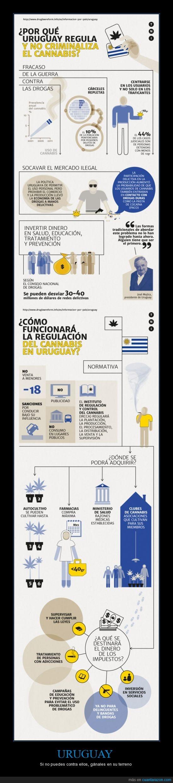 Autocultivo,Cannabis,Control,Estado,Legalización,Mujica,Uruaguay