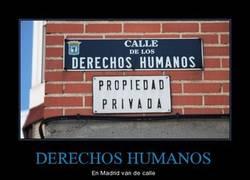 Enlace a DERECHOS HUMANOS