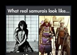 Enlace a SAMURÁIS REALES