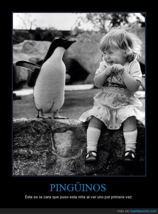 Emocion,Felicidad,Niña,Pinguino,risa