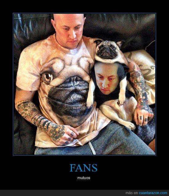 amo,camiseta,estampados,fans,mascota,perro,t shirt