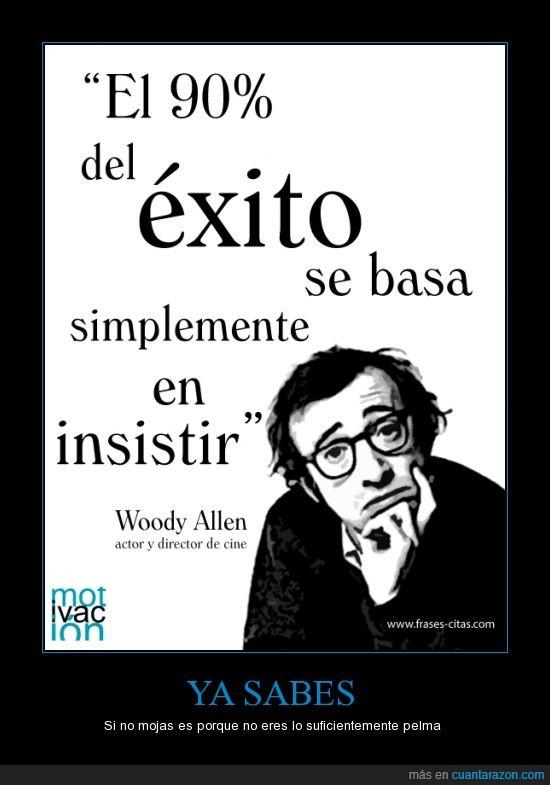 éxito,insistir,mosca cojonera,perseverancia,plasta,Woody Allen