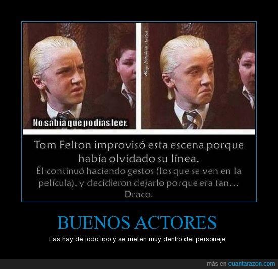 Cámara secreta,Draco,Felton,Harry Potter,Malfoy,pocion multijugos,Tom