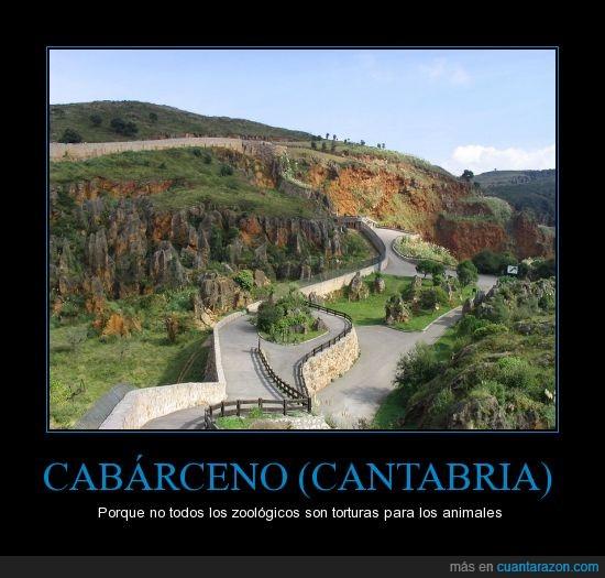 animales,cabarceno,cantabria,parque natural,zoo