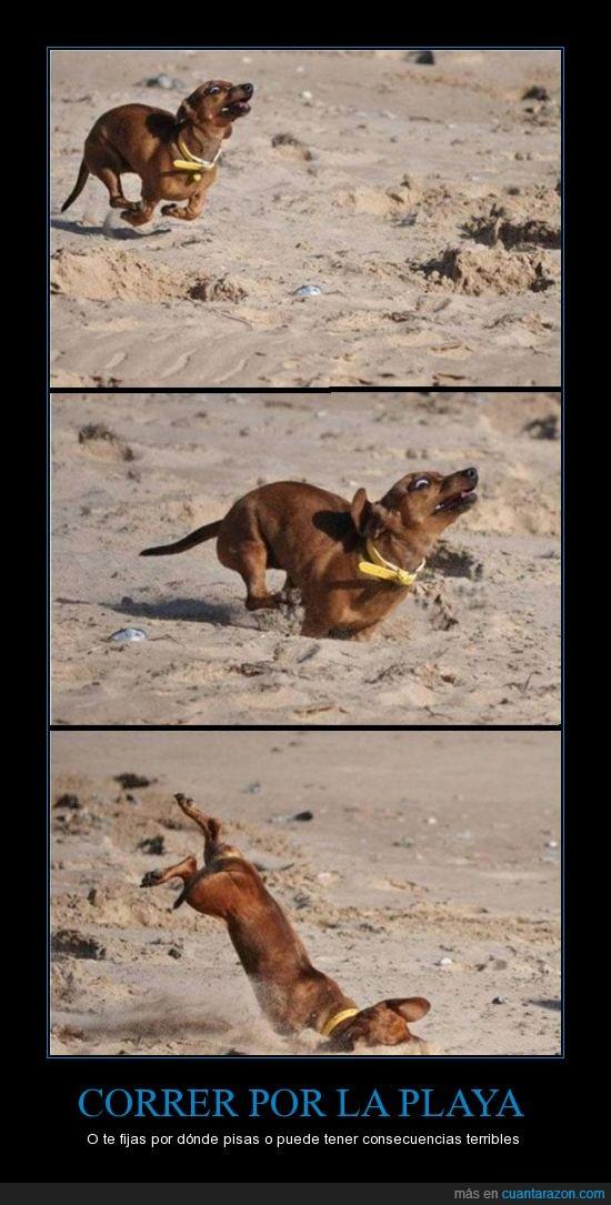 caer,cara,correr,donde,fijar,pisas,playa,suelo