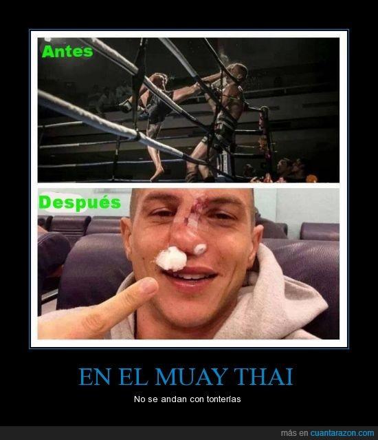 arte marcial,defensa,dolor terrible,golpe,Muay Thai,nariz,partida,partir,patada