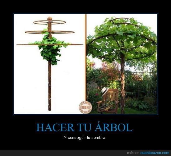 árbol,enredadera,ingenio,jardín,sombre