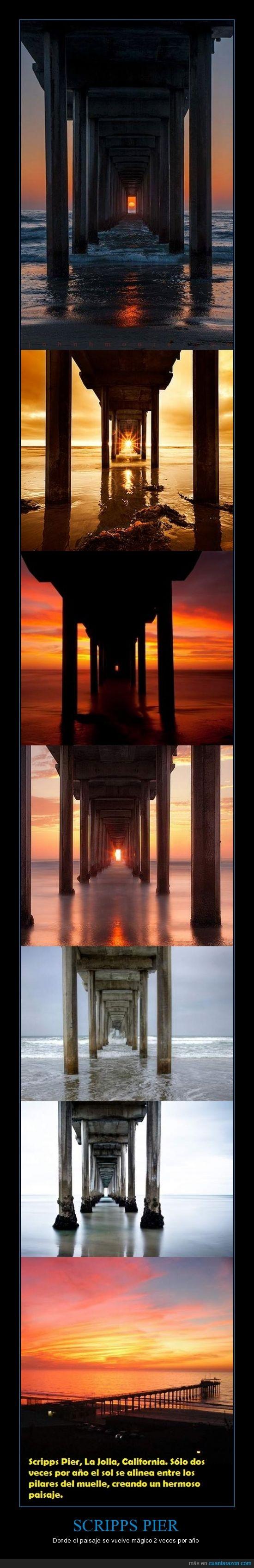 California,La joya,muelle,Paiaje,Scripps Pier,sol