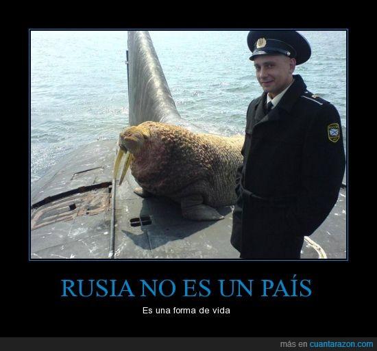 encima,morsa,Rusia,submarino