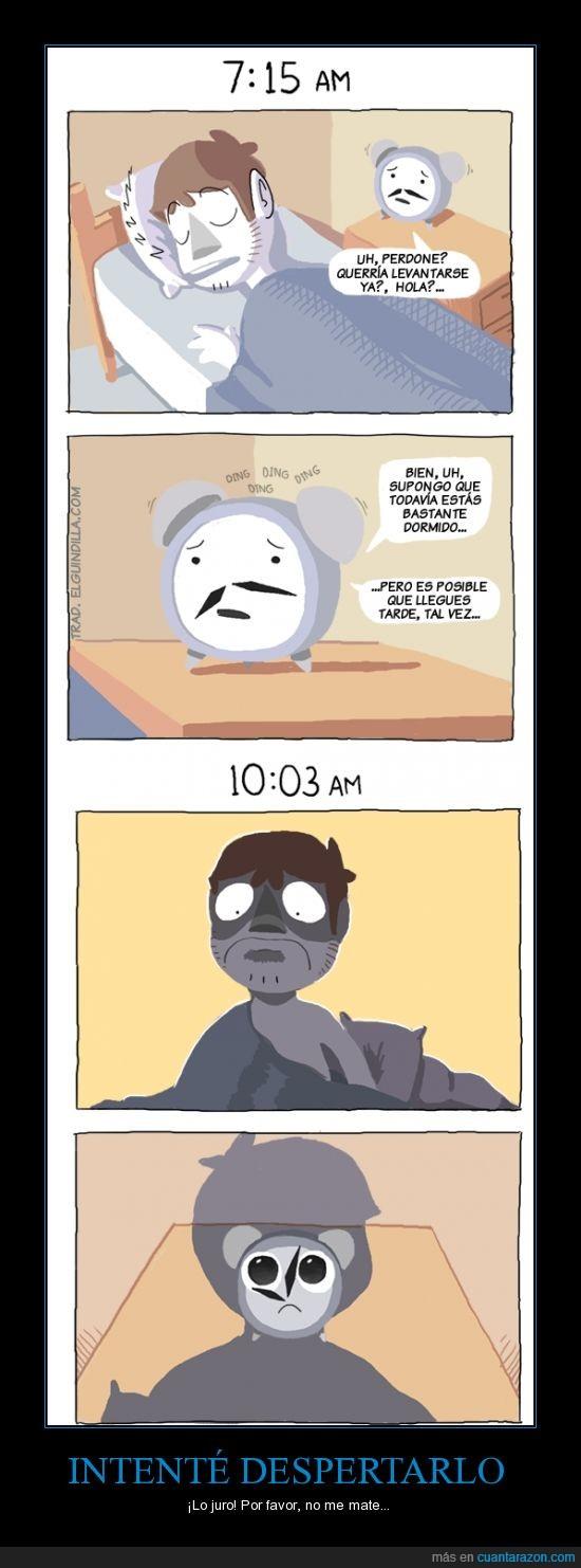 cansancio,Despertador,despertar,educadamente,mañana,tarde,tirar el despertador contra la pared