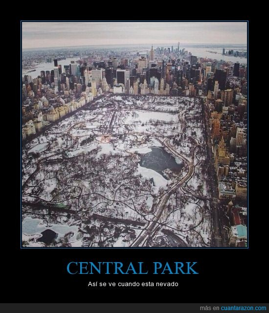 central park,frio,helado,nevado,new york,nieve,nueva york,ny