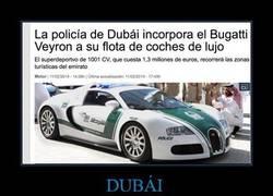 Enlace a DUBÁI