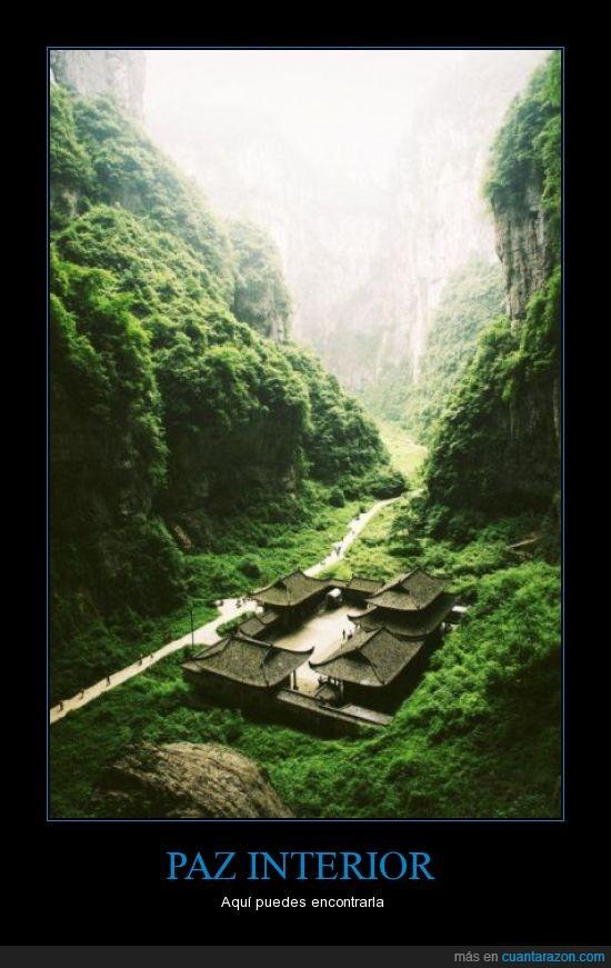 asia,bosque,montaña,perfecto,templo,verde