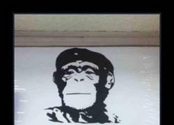 Enlace a Chimpan-ché Guevara