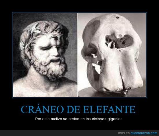ciclope,craneo,elefante,monstruo,ojo