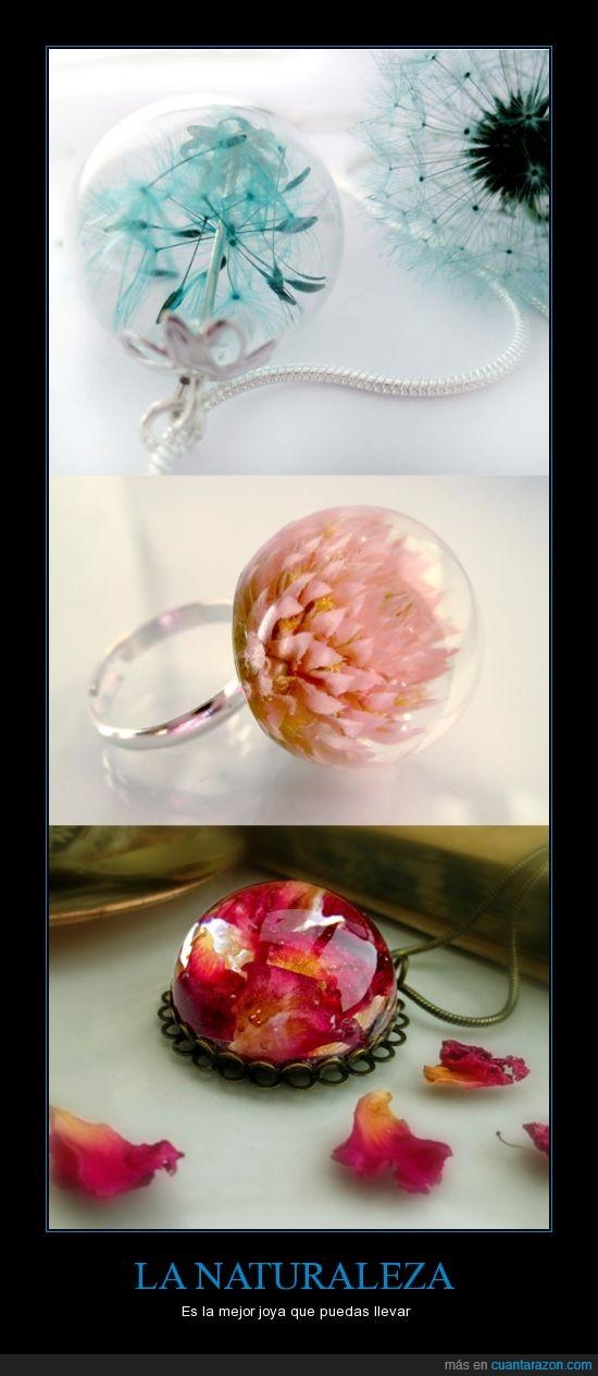anillo,colgante,collar,flor,joya