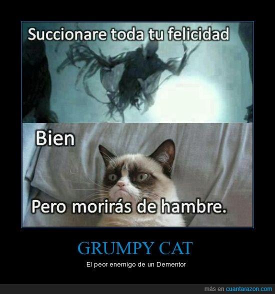 dementor,enemigo,felicidad,grumpy cat,harry potter,morir de hambre