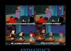 Enlace a ANIMANIACS