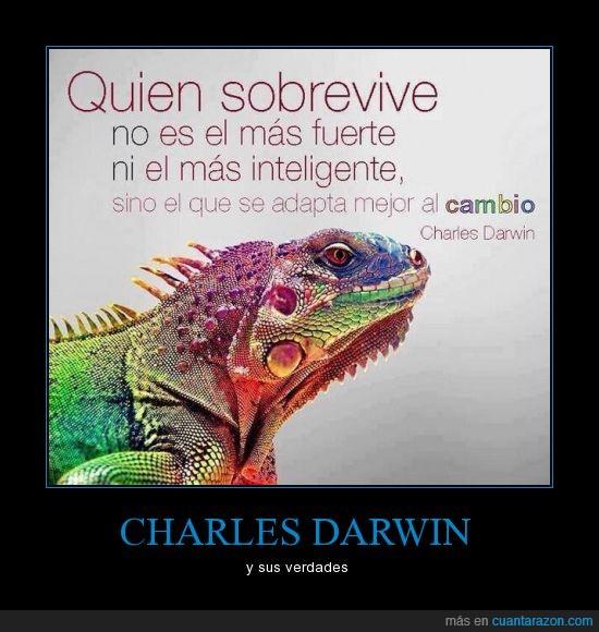 adaptar,cambio,darwin,fuerte,mejor,sobrevive