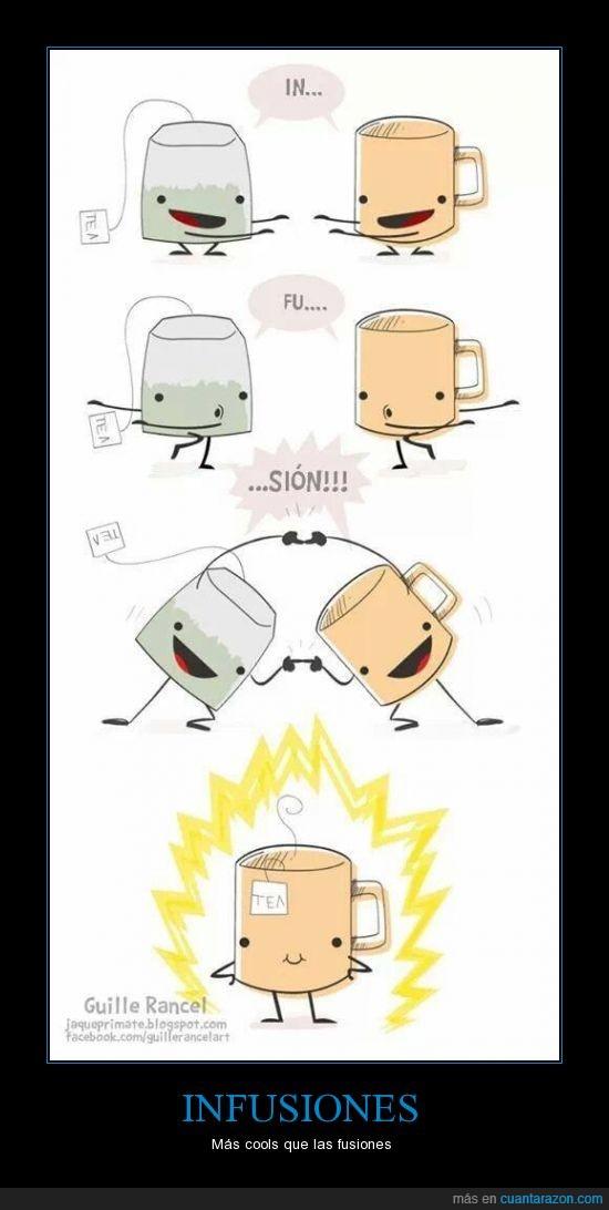 camamilla,fusion,infusion,té