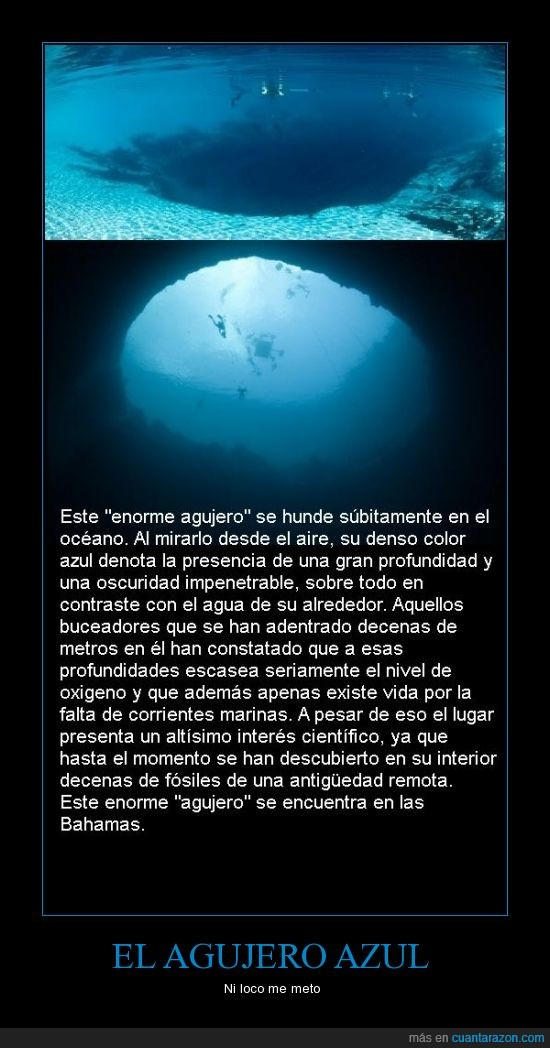 adentro,agujero,agujero azul,ahi,azul,bahamas,fosiles,vida