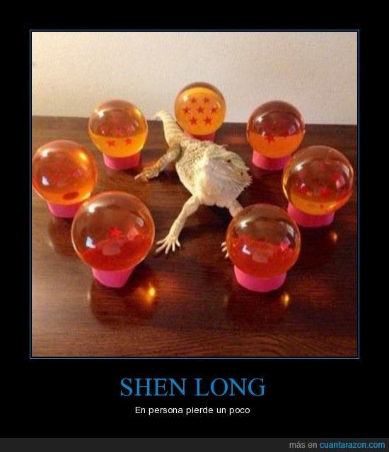 Dragon ball,Esferas,Iguana,Shen Long