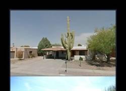 Enlace a Cuidado con usar un cactus como decoración