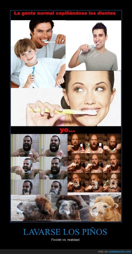 anuncios,babas,camello,dientes,espuma,limpio,llenar,pasta,real,realidad