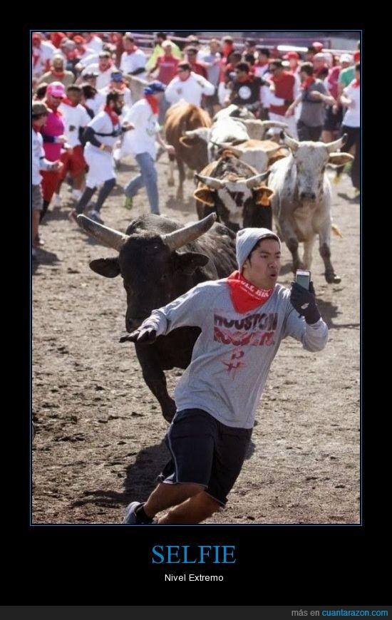 autofoto,correr,extremo,peligro,selfie,toro