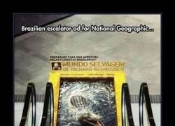 Enlace a Los anuncios del National Geographic cada vez más currados