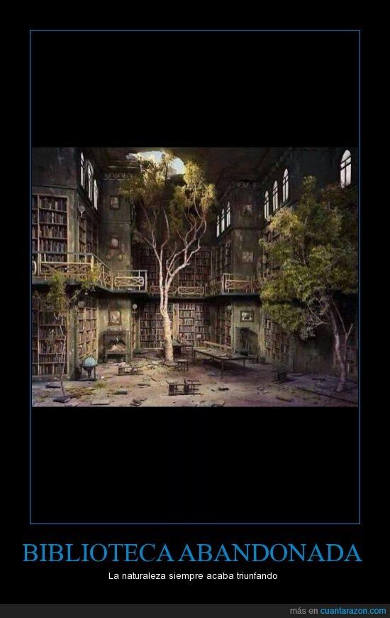 abandonada,arbol,biblioteca,crecer