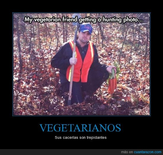 bosque,Caza,foto,Vegetarianos,Zanahorias