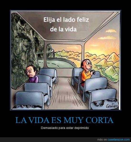 autobus,dificil,mirar,montaña,paisaje,positivo,rocas,ventana,ventanilla,ver,vision