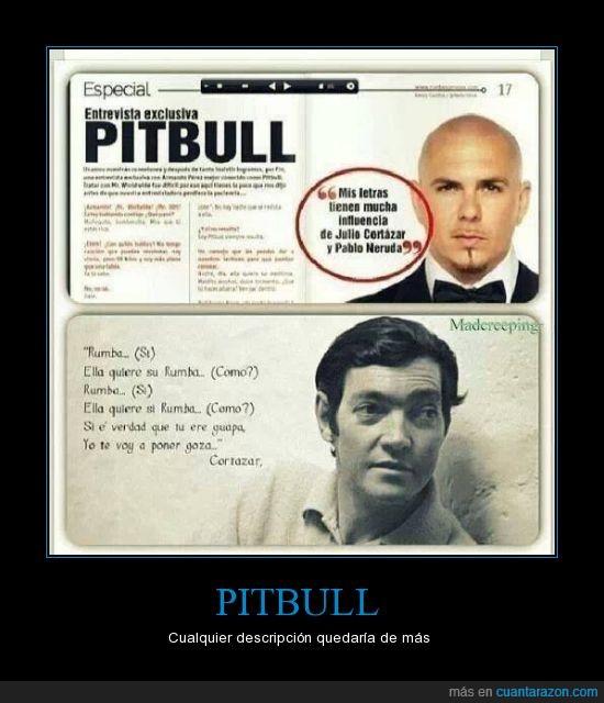 cortázar  y neruda se quieren matar (aunque estén muertos),estaba drogado cuando lo dijo,pitbull es un perro también,vergüenza ajena