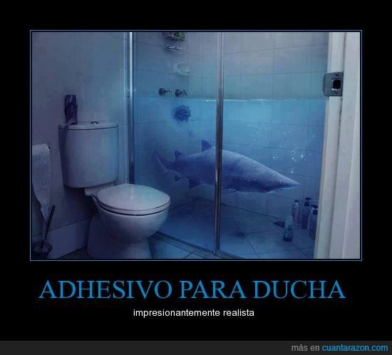 aseo,baño,ducha,puertas,tiburón,wc