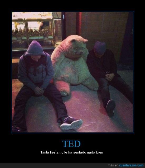 bien,después de la película se pasó un poco con los foskitos,fiesta,gordo,mal,osito,peluche,TED