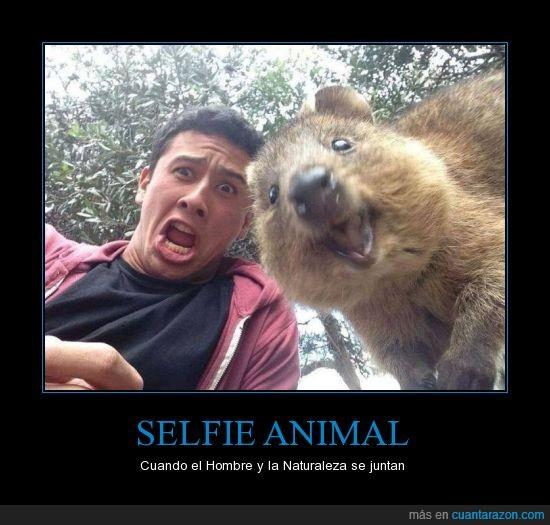 Animales fotogenicos,Caras,fotos,Hombre y naturaleza,Selfie