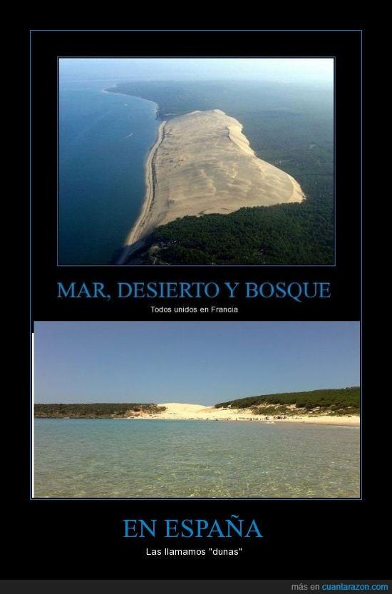 agua,arena,bolonia,bosque,duna,duna significa desierto en frances
