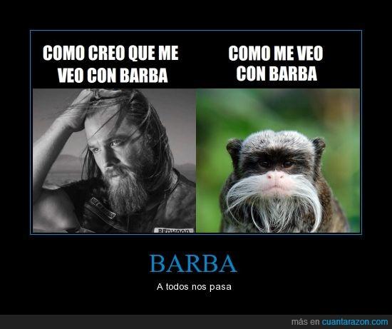 barba,bonobo emperador,opie winston,soltar spoilers=baneo,Sons of Anarchy