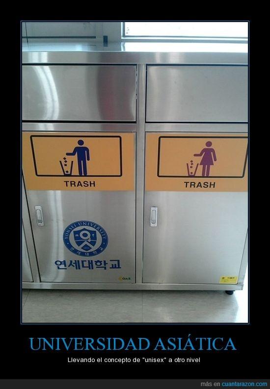 asia,basura,mezclado,unisex,universidad,¿discriminación?