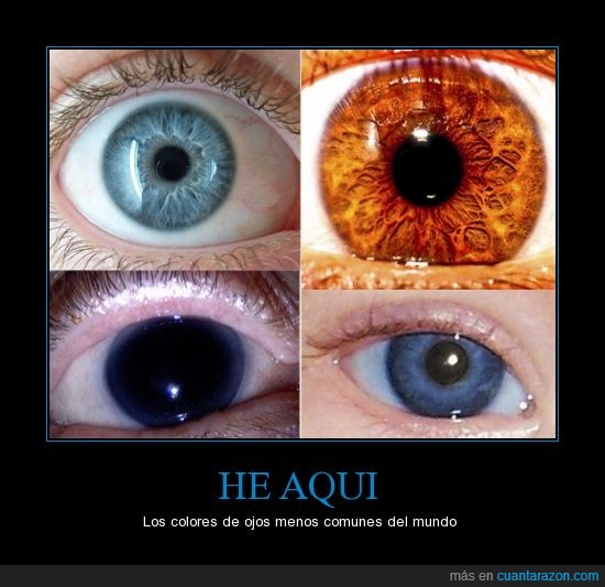 cobalto,color,fuego,gris,naranja,negro,ojo