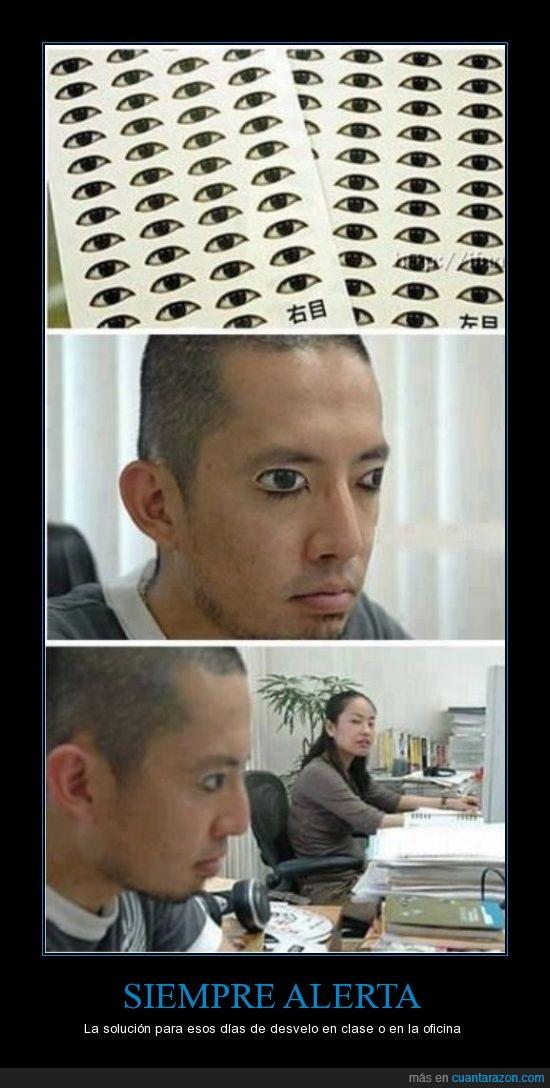 calcomanías,chinos,dormir tranquilo,japoneses,oficina,ojos,ojos abiertos,pegatinas