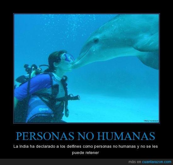 delfin,humanas,india,personas