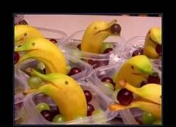 Enlace a Delfines con plátanos y uvas... MOLAN